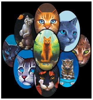 Pisicile războinice vol.1