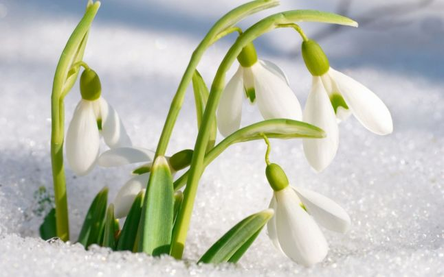 Legenda primăverii