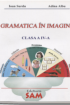 Gramatica - Voi stiti sa alegeti corect numarul de silabe?