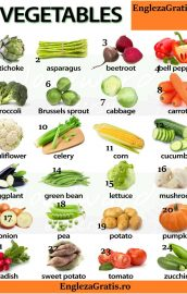 Vegetables – Legume – 1