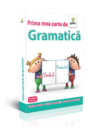 Gramatica-Antonime si sinonime