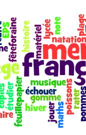 Quiz de limba franceza