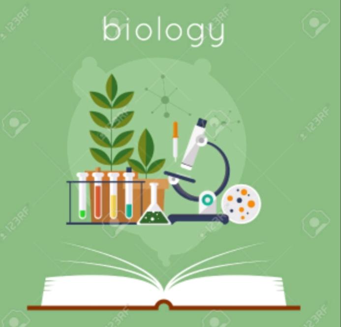Biologie – clasa a VII-a
