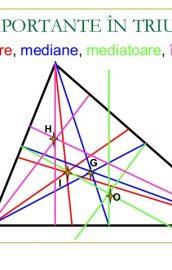 Linii importante în triunghi