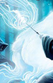 Bonus pentru Misiunea Harry Potter