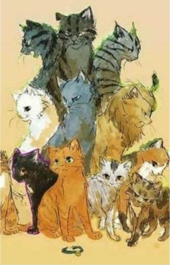 Pisicile războinice volumele 1-7