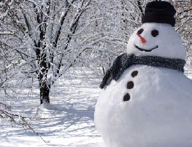 Despre anotimpul iarna