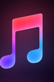 Auzi de teorie muzicală