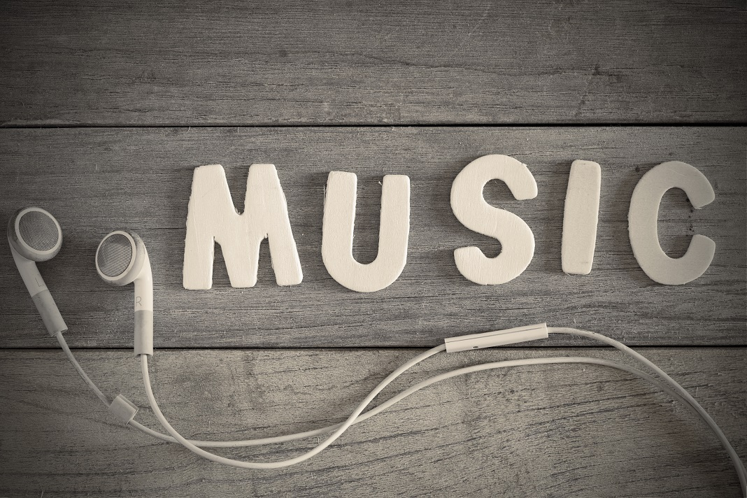 Cine interpreteaza melodiile?
