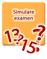 SIMULARE CLASA a VII-a