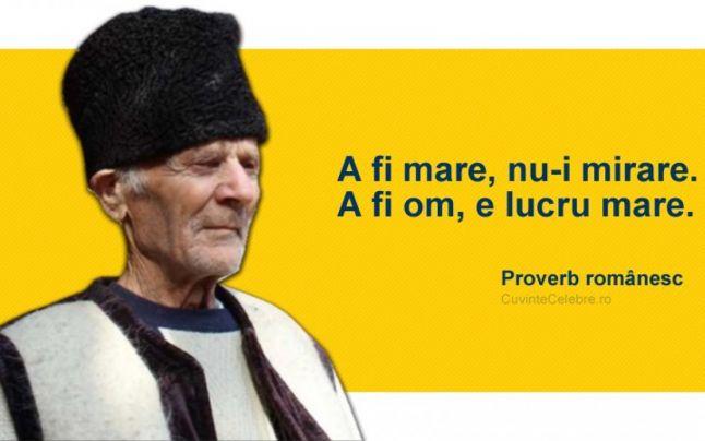 Proverbe si zicatori