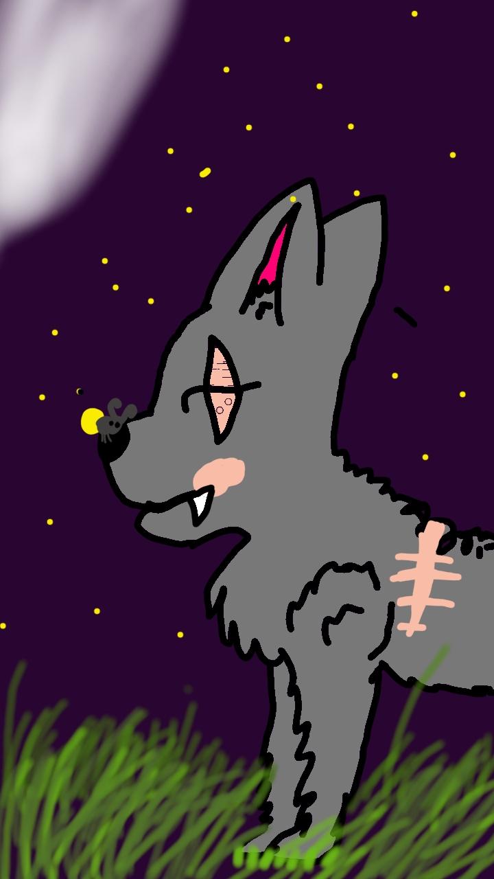 Curiozități despre lupi