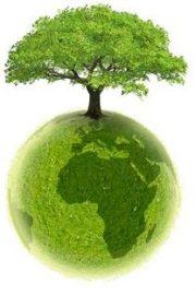 Ecologizarea