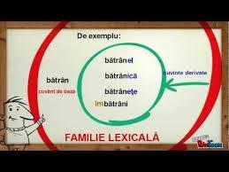 Cuvinte înrudite, familia lexicală (1)