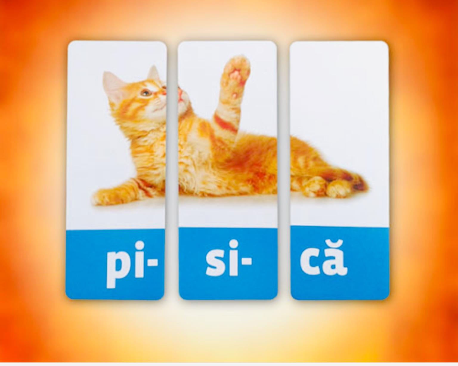 Cuvinte despartite in silabe