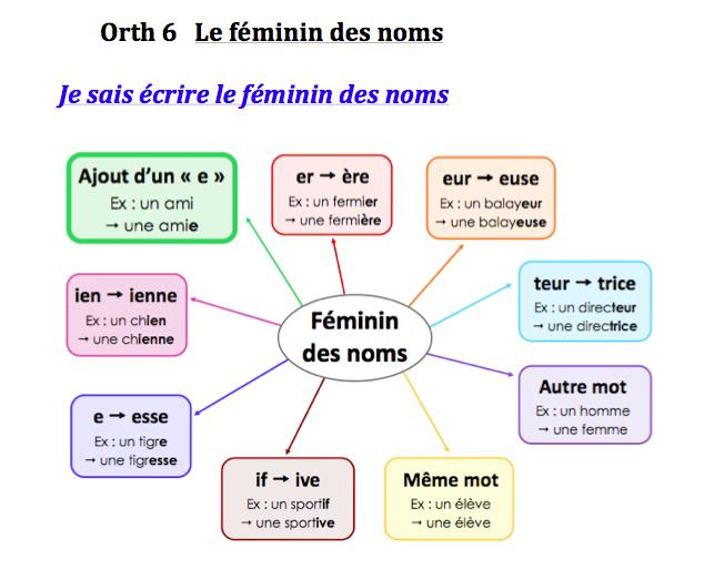 Le féminin des noms