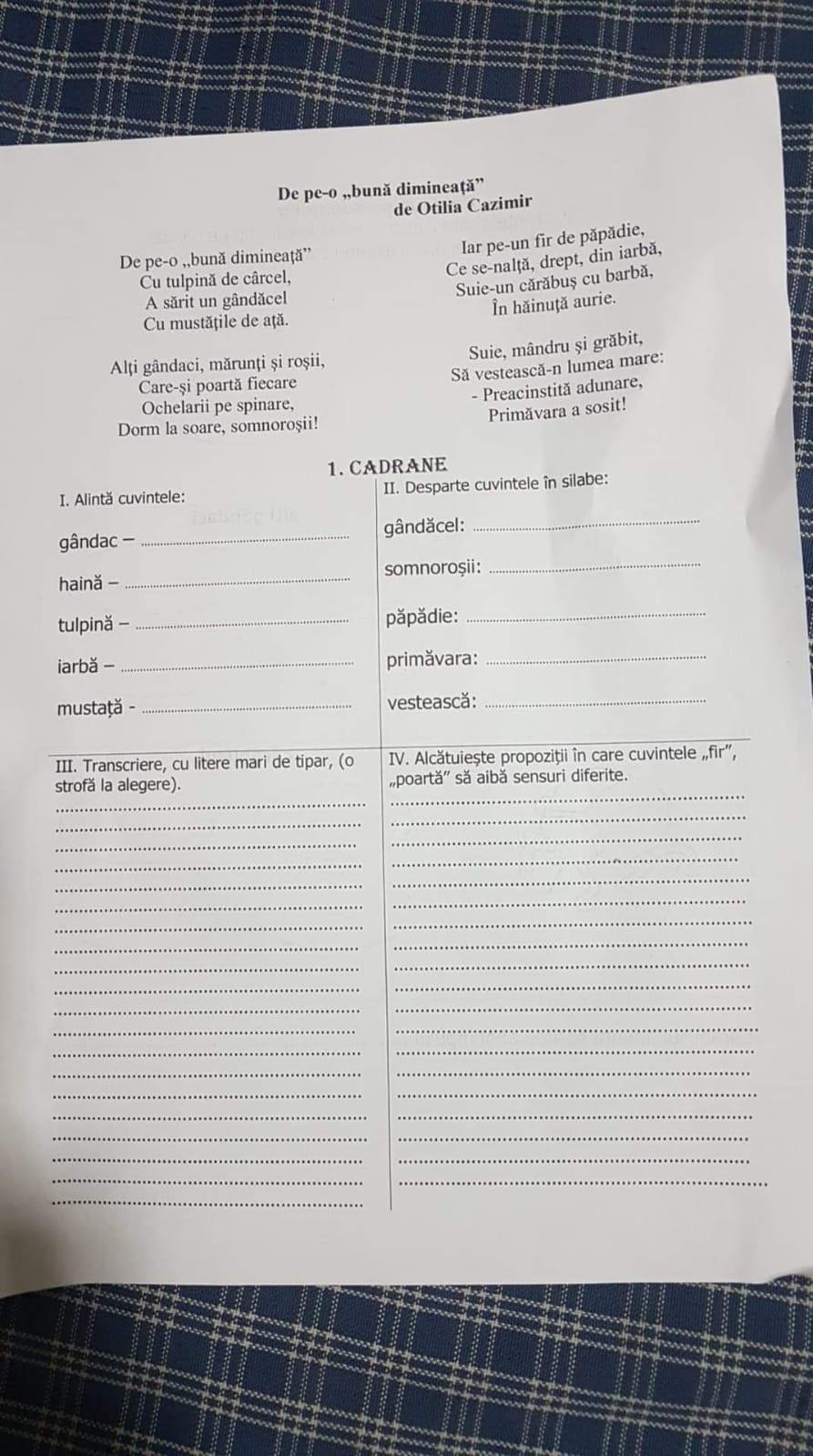 Desparte in silabe