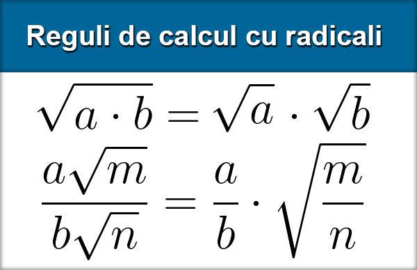 Radicali #1
