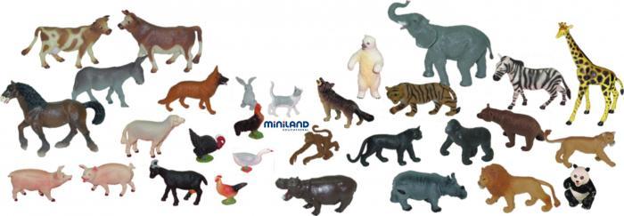 Curiozitati cu si despre animale din lumea larga