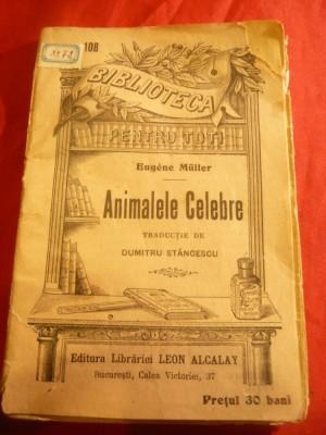 Animale faimoase din cărți!