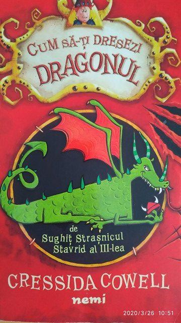 Cum sa-ți dresezi dragonul 1