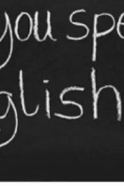 Animalele in Engleza