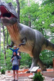 Specii de dinozauri