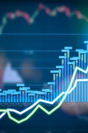 Economia și afacerea proprie