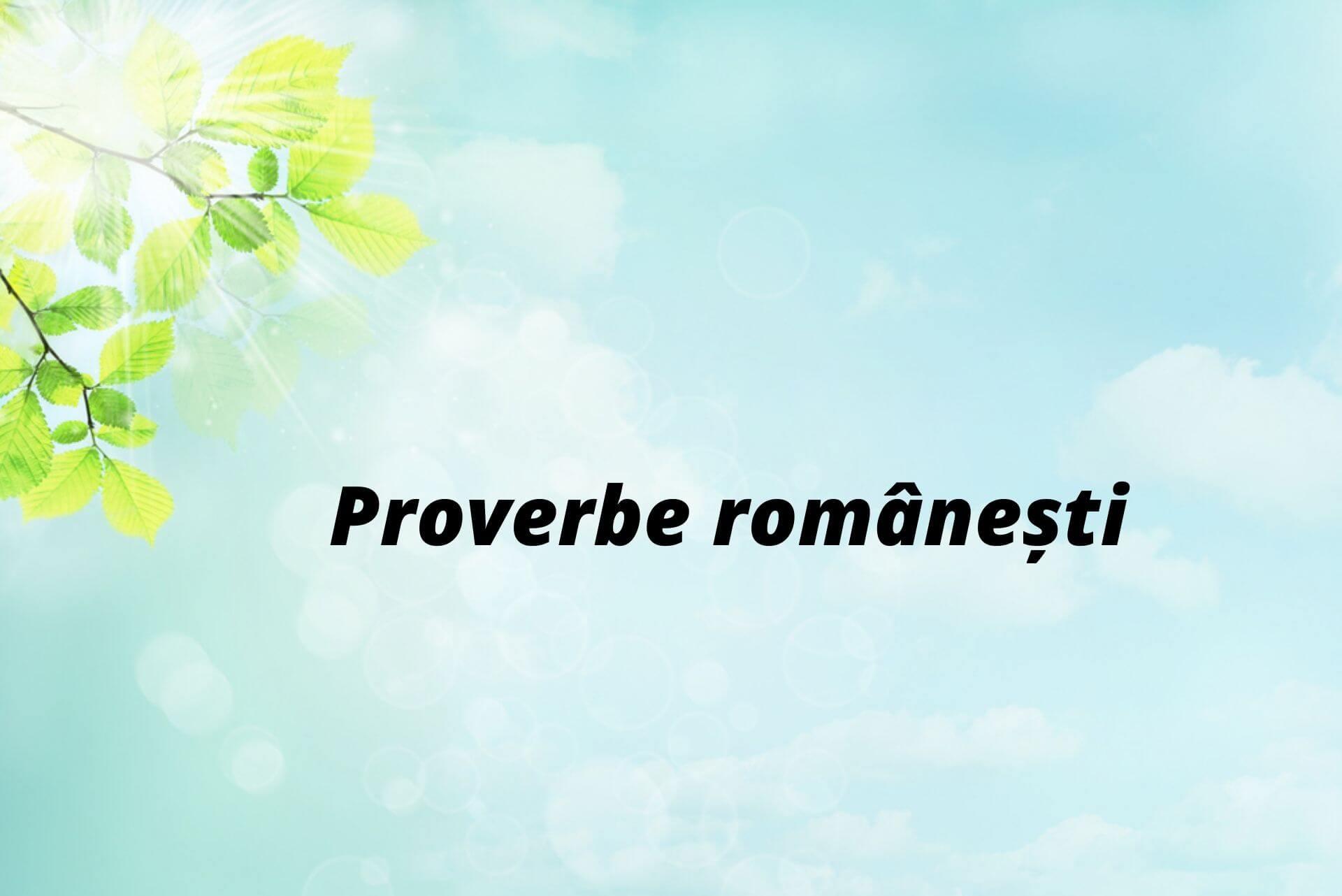 Proverbe cu animale