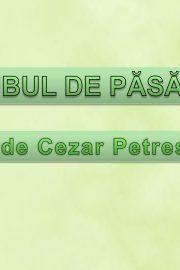 """,,Cuibul de păsărele""""- după Cezar Petrescu"""