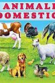 Animalele domestice in limba engleza