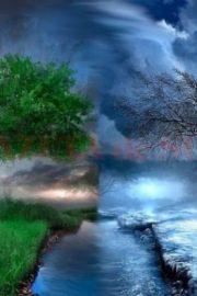 Anotimpurile și lunile anului