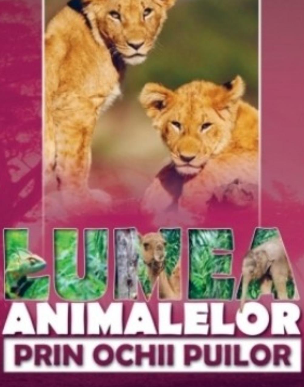 Totul despre animalele de companie!