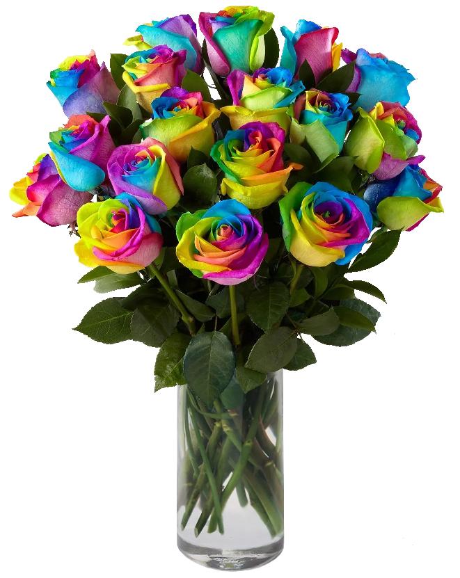 Trandafirii din Mexic- O carte minunată