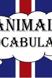 Animale – [50]