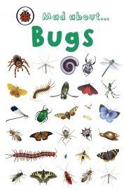 Being a bug quiz