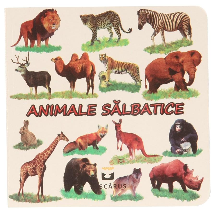 Curiozitati din lumea animalelor