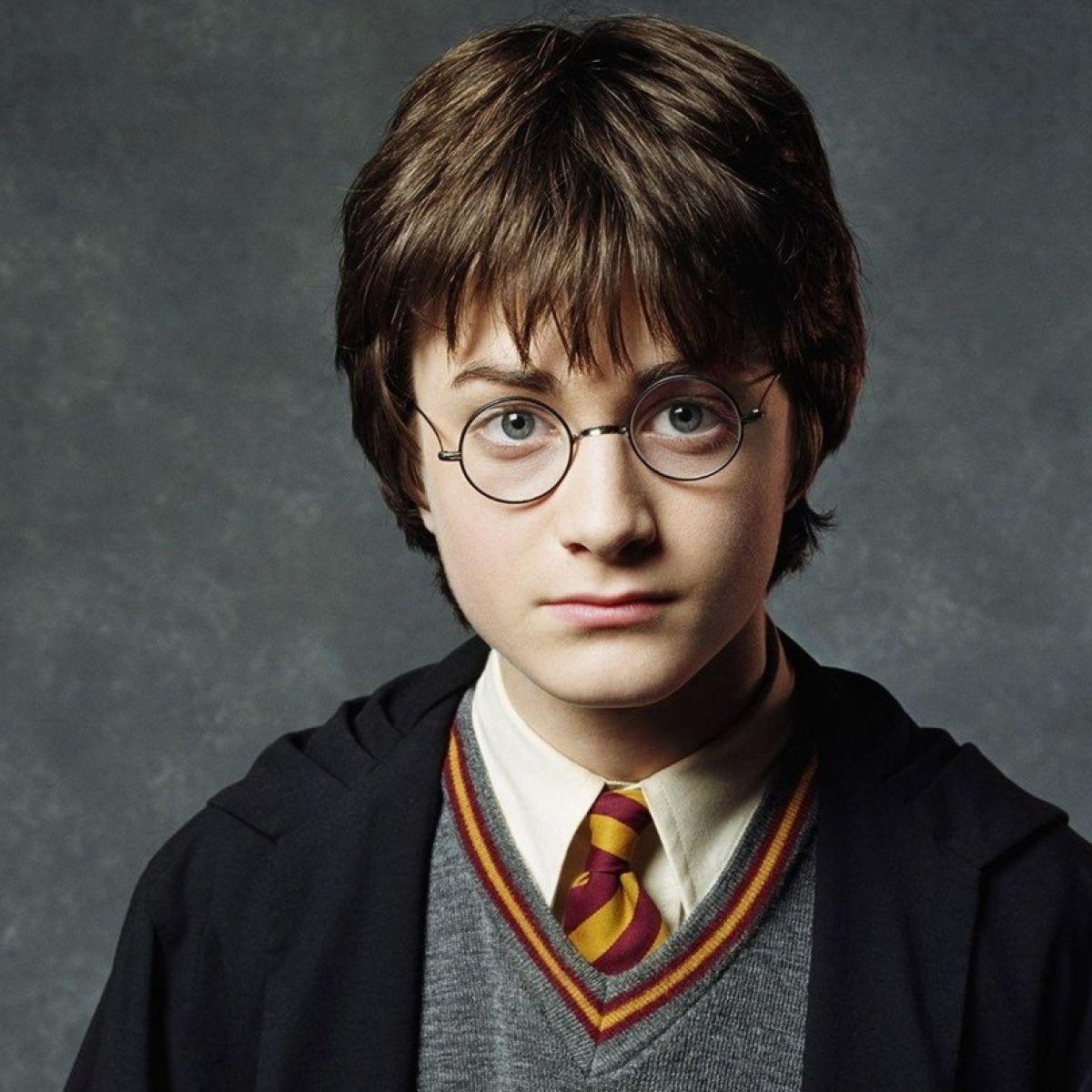 Harry Potter – PRIETENI SI DUSMANI – [2]