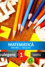 Matematica frumoasa clasa I pentru copii inteligenți
