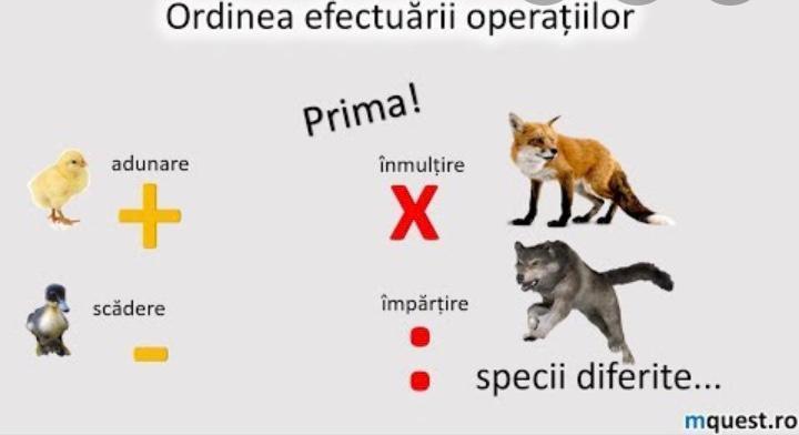 Ordinea efectuării operatiilor