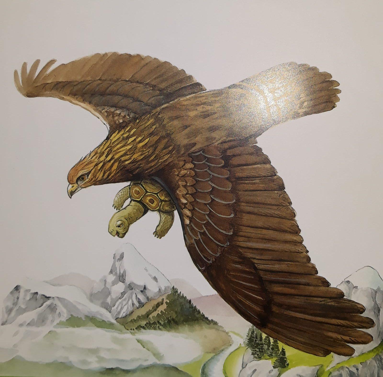 Vulturul și broasca țestoasă