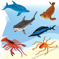 Die Meerestiere