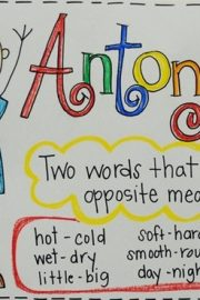 Finding Antonyms