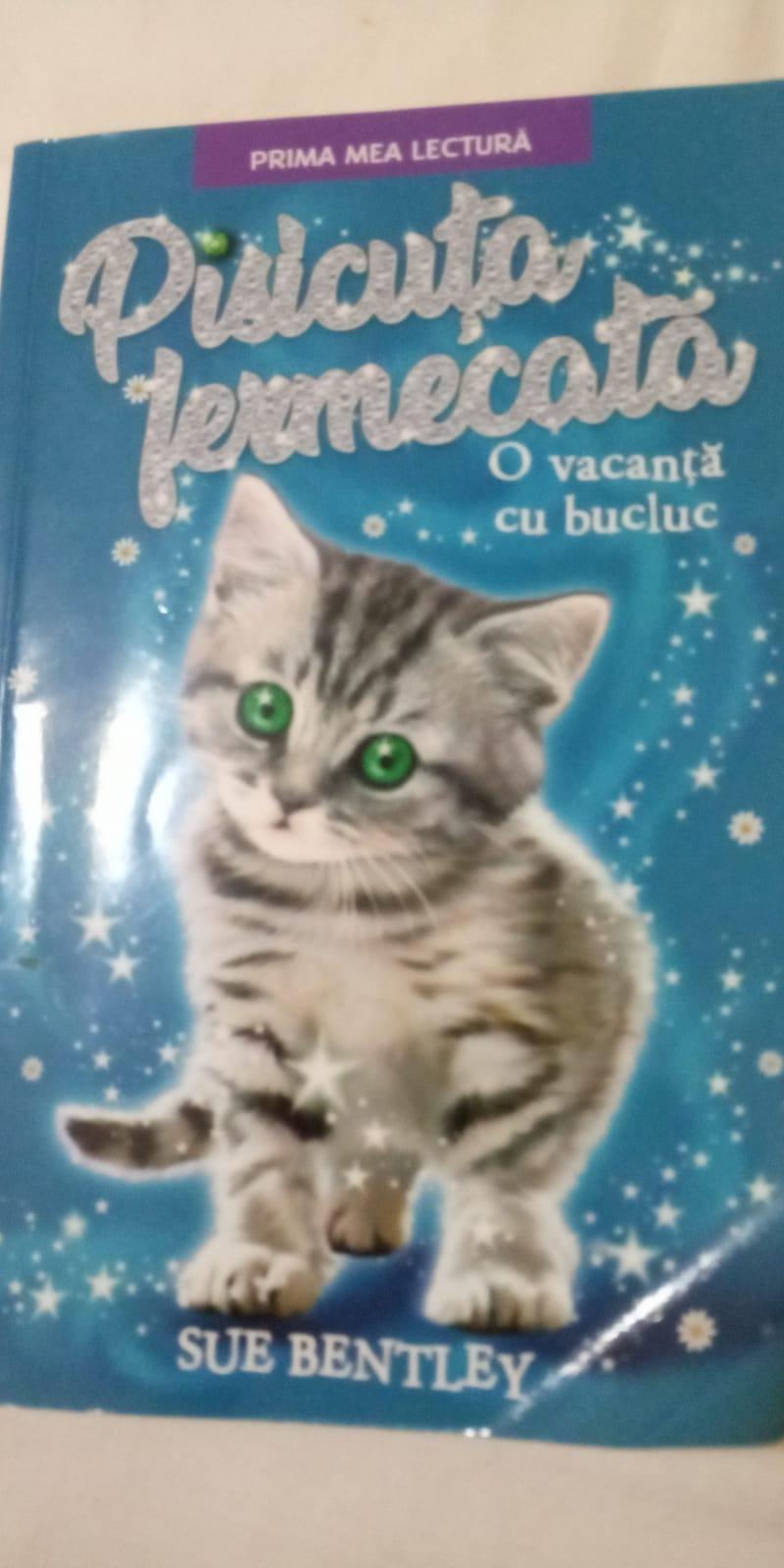 Pisicuța fermecată  – O vacanta cu bucluc