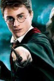 Viata lui Harry Potter
