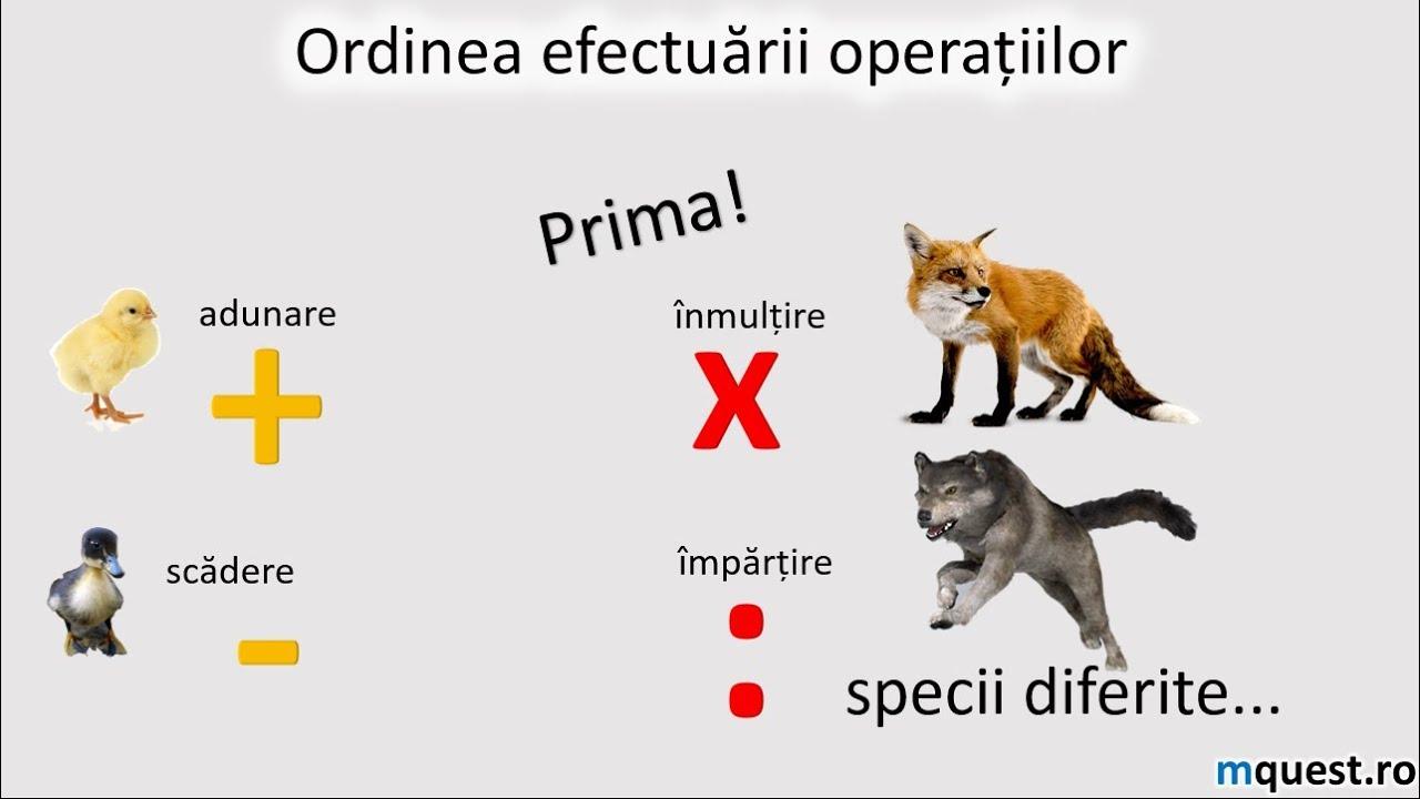 Ordinea efectuării operațiilor(I)