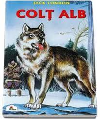 Colt Alb  – [2]