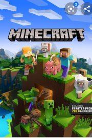 Minecraft – [11]