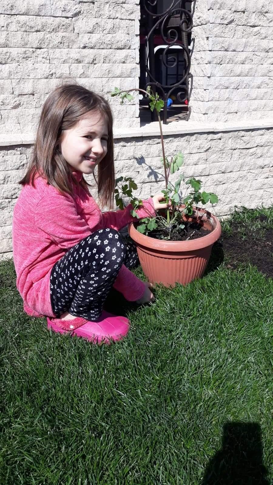 Am plantat flori – [2]