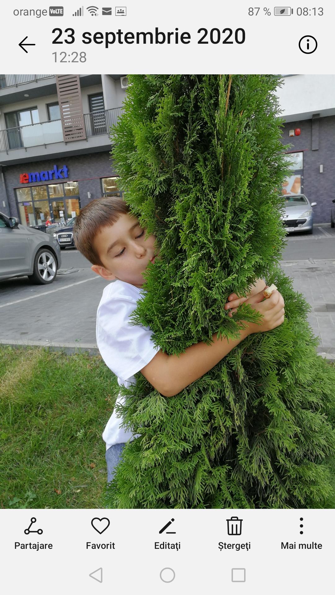 Iubim și îngrijim natura